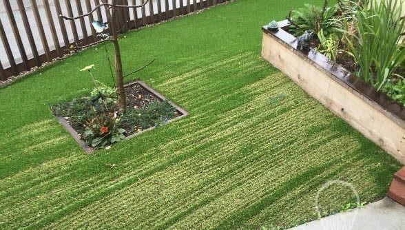 Heat damaged artificial grass